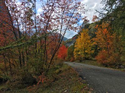 Vallée de Freissinières en automne