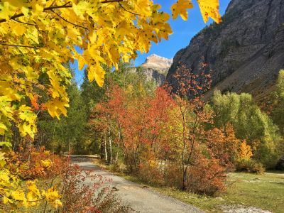 Eté indien Hautes Alpes