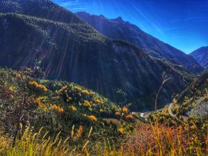 Autumn Queyras