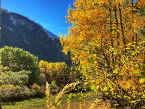 Fall foliage Queyras