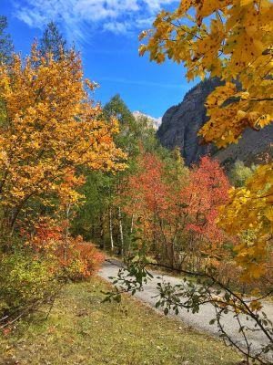 Parc des Ecrins en automne