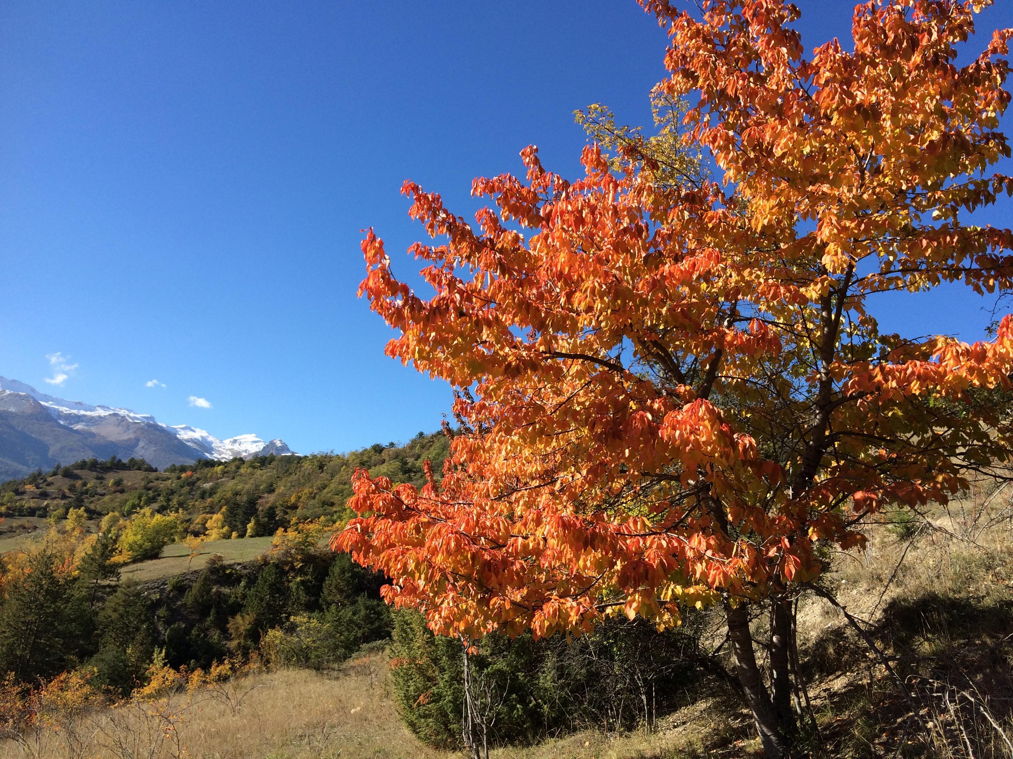 L'automne autour de la Font d'Eygliers