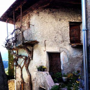 La maison avec la vigne