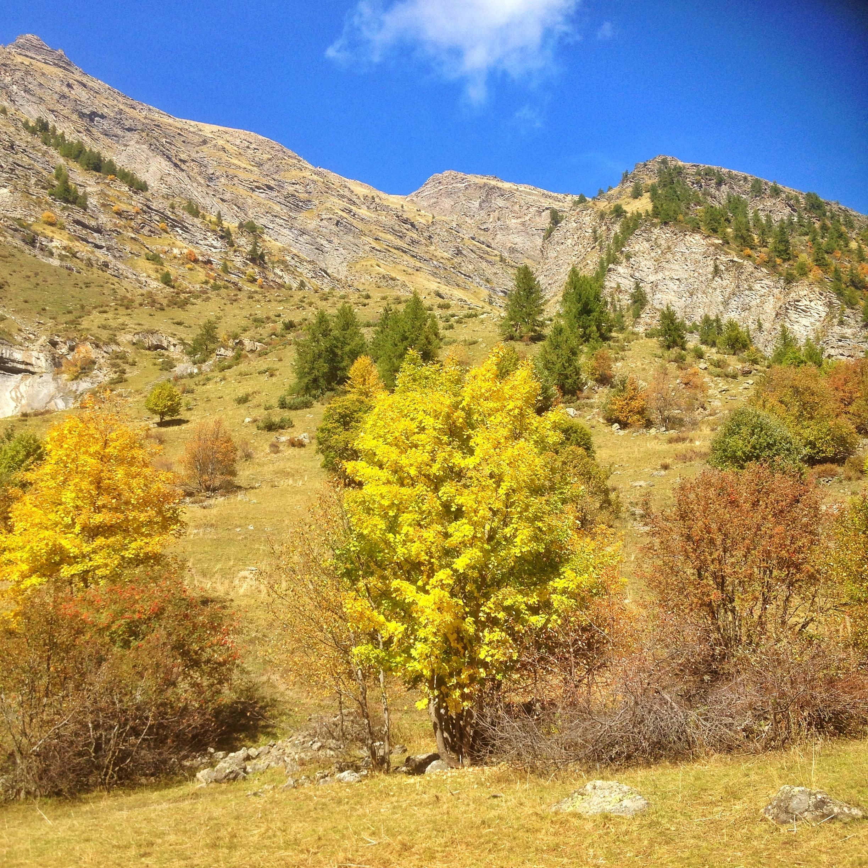 La vallée du Fournel en automne