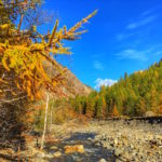 Les Ecrins en automne