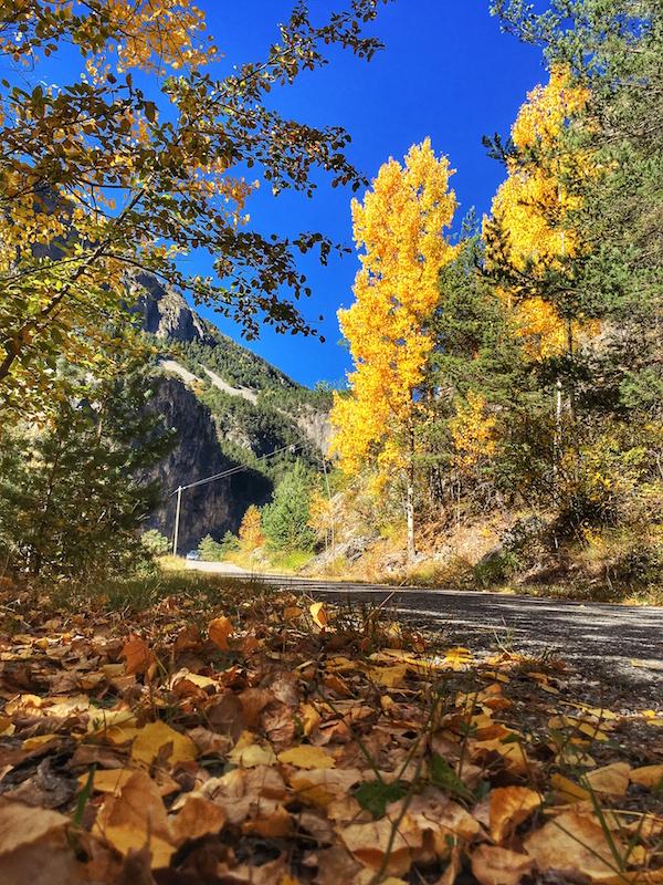 Herfstkleuren in de Queyras